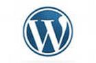 Сайт своими руками или знакомство с WordPress