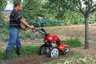 Мотоблок - отличный подарок для огородника